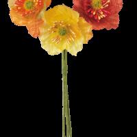 Διακ. Παπαρούνες Κόκκινο, Πορτοκαλί, Κίτρινο